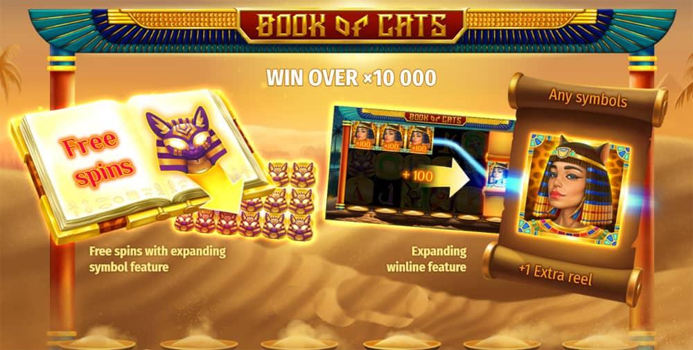 Book of Cats Pokies Bonus
